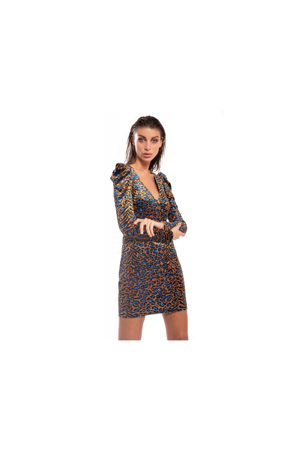 Sheath Dress Animalier