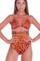 Bikini Brassiere Slip A Vita Alta Animal Colors Agogoa - 2